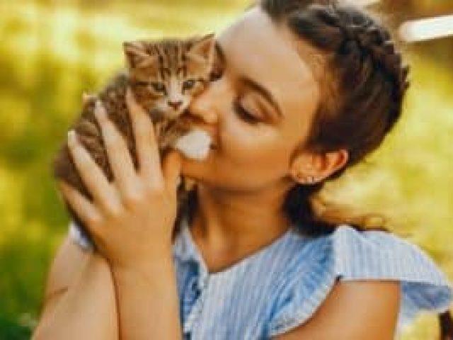 plano de saude para felino Saúdepets